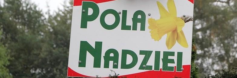 Wolontariusze ponownie obsadzili Pola Nadziei (foto) [slubice24.pl]